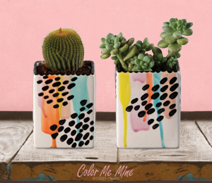 Costa Rica Drippy Square Planters